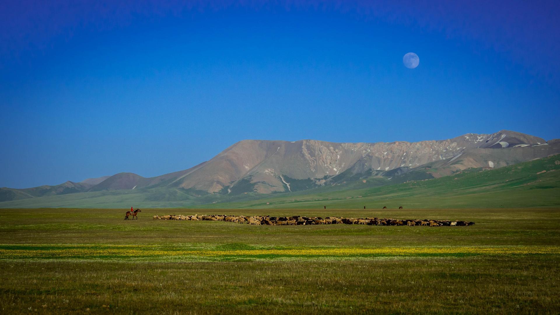 Kirghizistan15