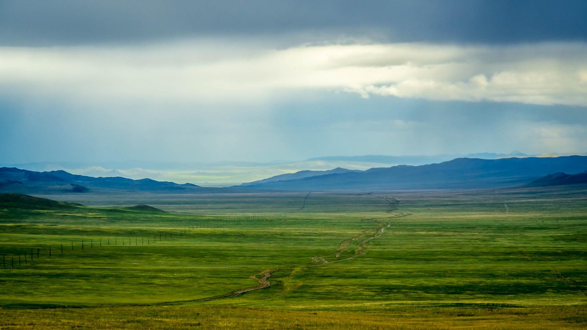 Mongolie53