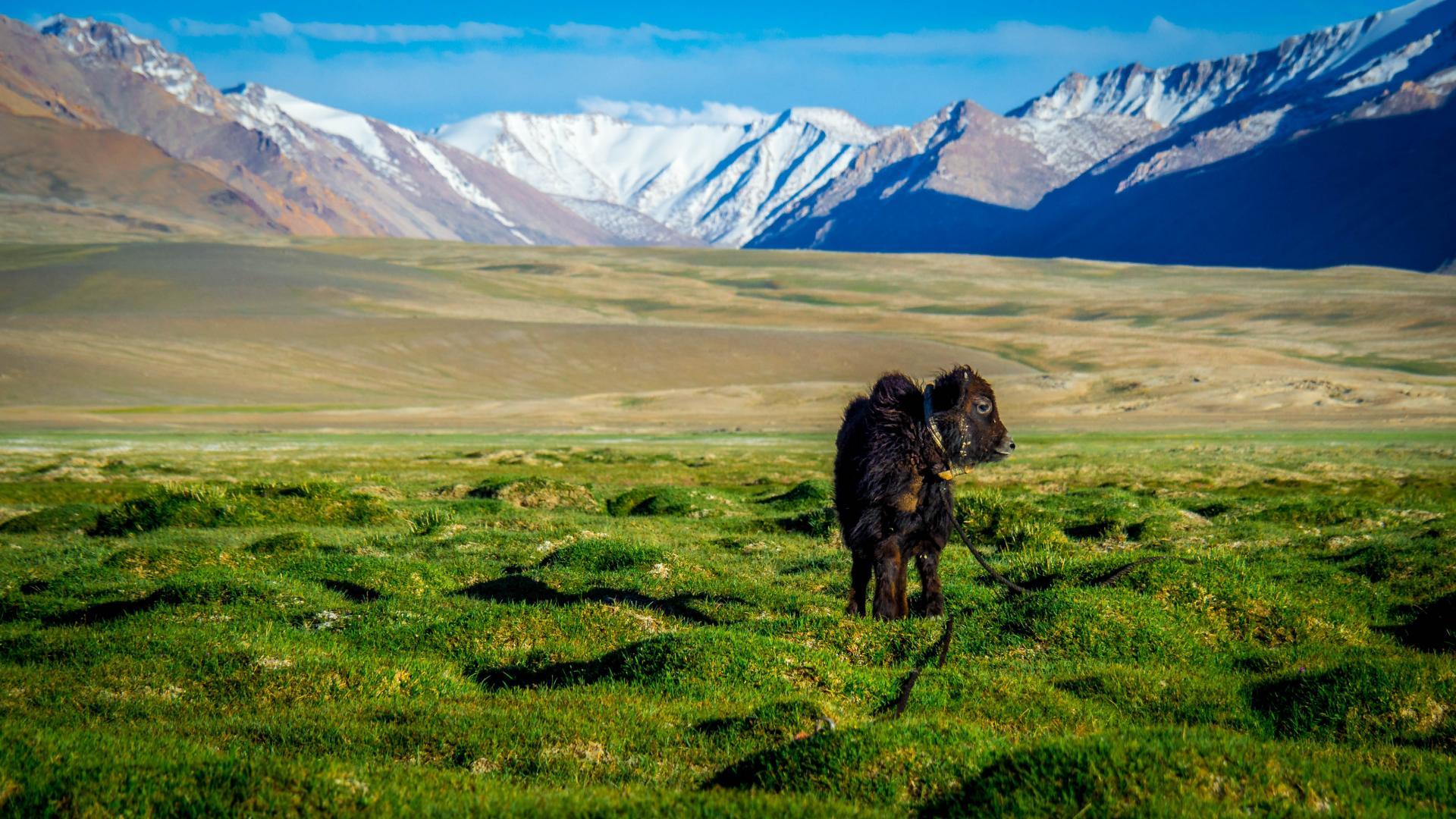 Tadjikistan45